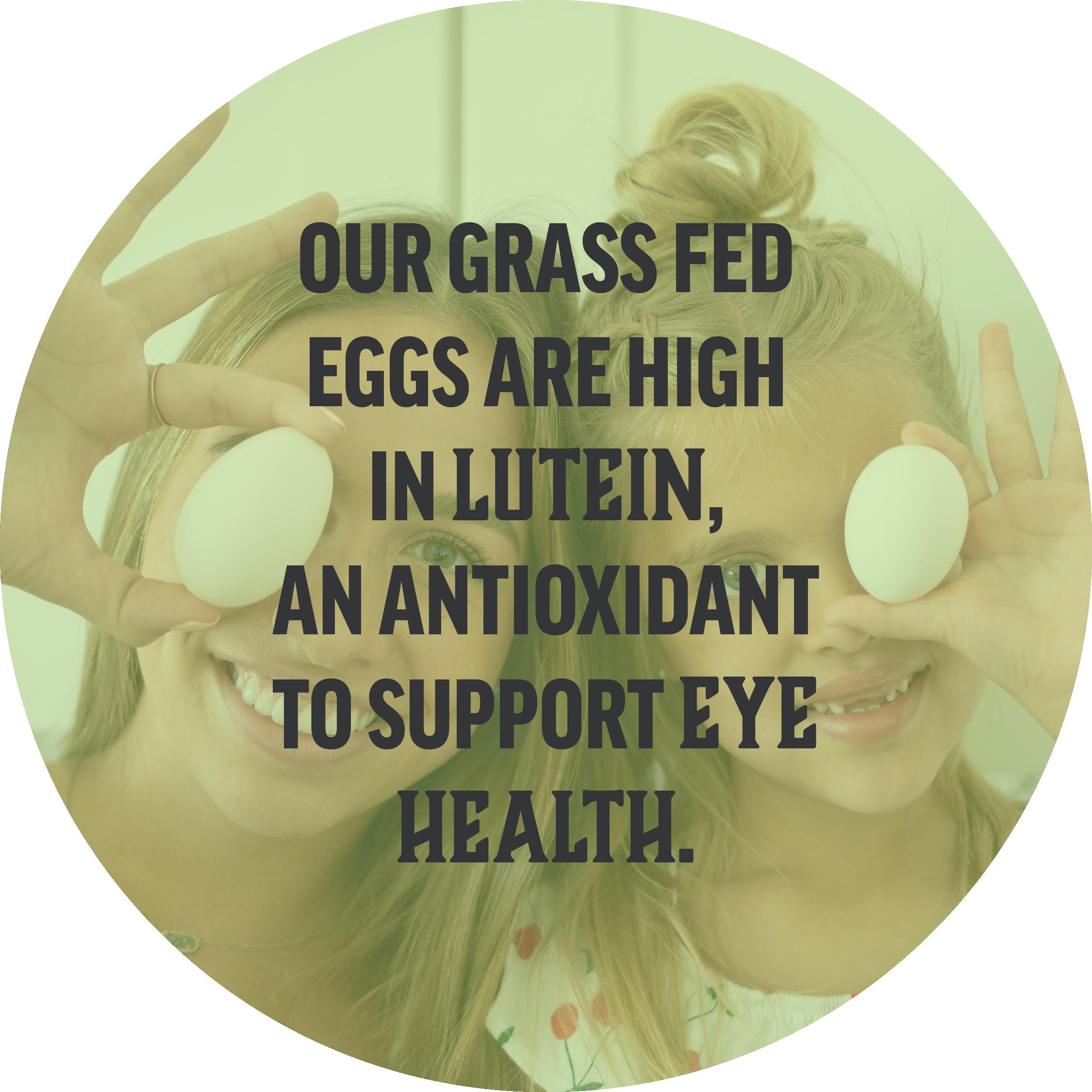Hickman's Eggs Hickman's Grass Fed Eggs | Hickman's Eggs